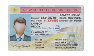 New Mexico Driver License psd template