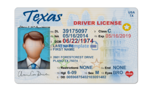 Texas driver license Template psd. Texas Driving License psd template