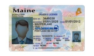 Maine driver license template