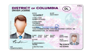 District of Columbia Driver license template. District of Columbia Driving License psd template