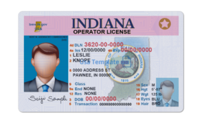 Indiana driver license template. Indiana Driving License psd template