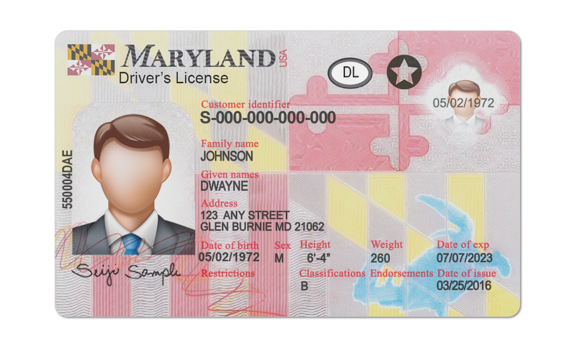 Maryland Driver License psd template. Maryland Driving License psd template