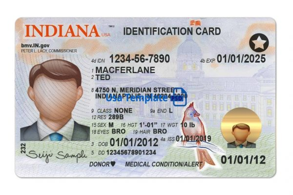 Indiana driver license template New